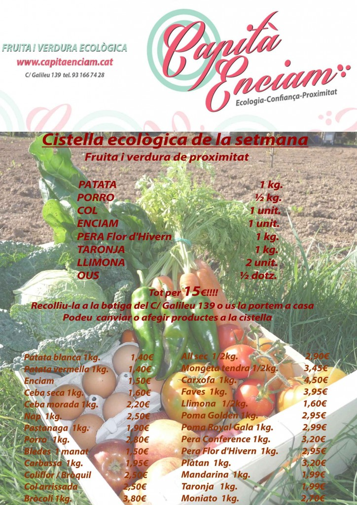 Cistella 2015-01-24