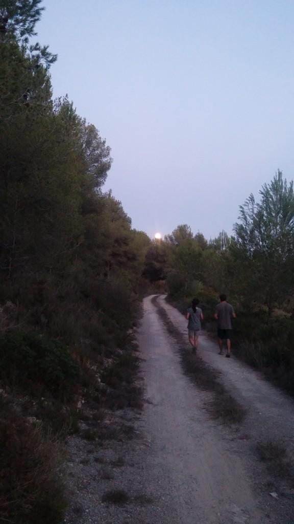 De tornada sota la lluna