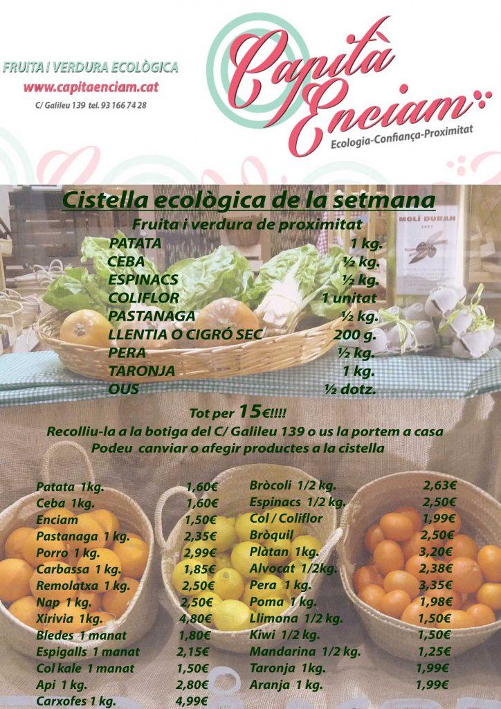 Cistella amb verdura ecològica